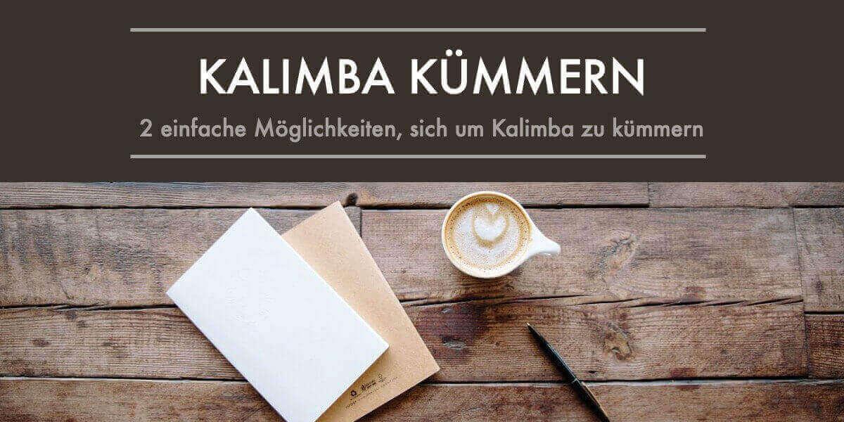 pflege des kalimba